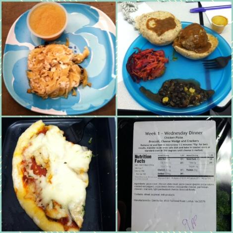 DietToGo Day 1