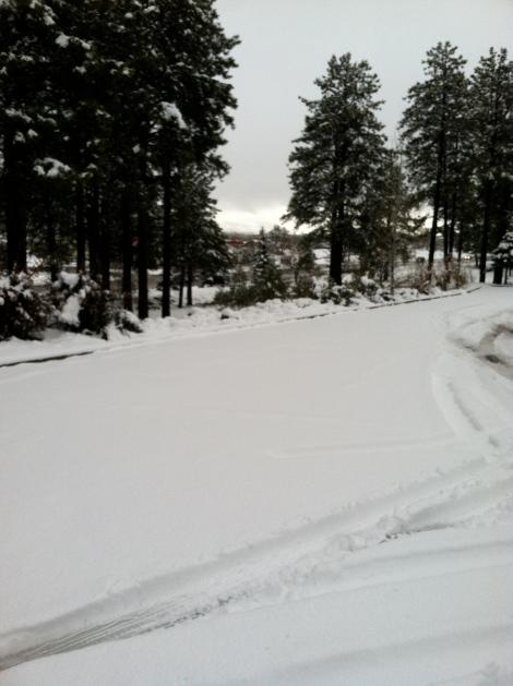 Snow Again 030813