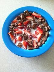 Chocolate Fiber One