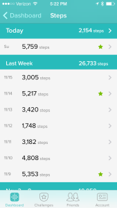 Fitbit Steps 111014