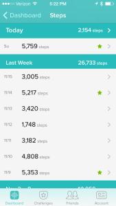 Fitbit Steps 111014